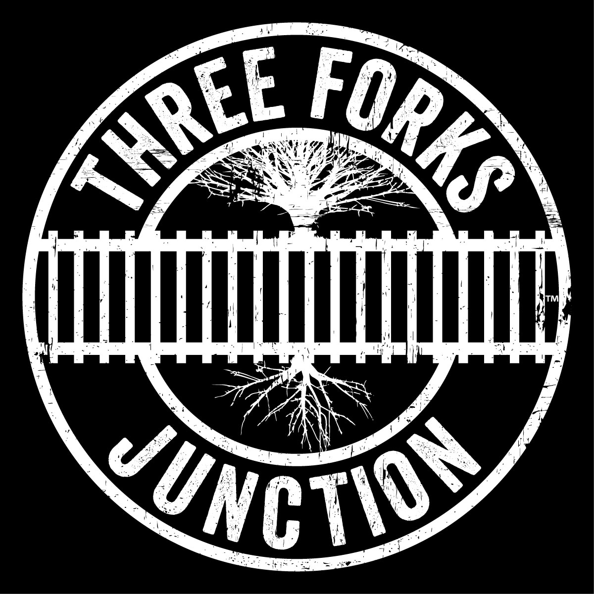 THREE FORKS JUNCTION